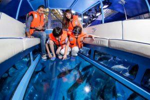 Dubai Aquarium_Glass Boat