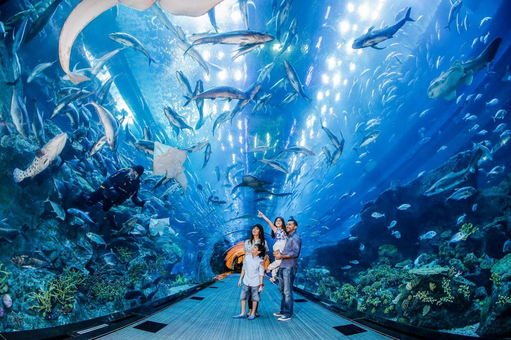 Dubai Aquarium_Tunnel